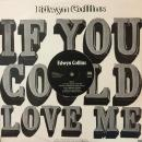 "EDWYN COLLINS / IF YOU COULD LOVE ME [12""]"