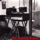 "WAKING HOURS / NOTHING TO HIDE [7""]"
