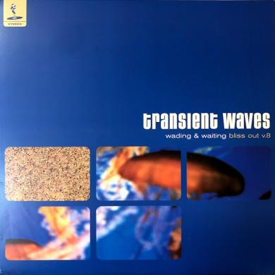 "TRANSIENT WAVES / WADING & WAITING (BLISS OUT V.8) [LP+10""]"